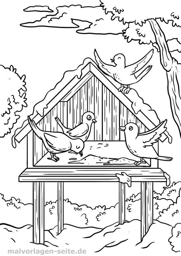 Coloring page birds feeding birdhouses - free coloring pages