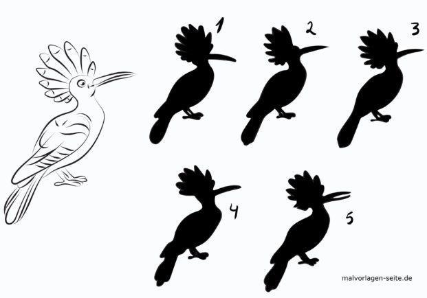 Schatten Rätsel für Kinder - Vogel