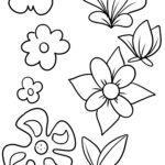 Գունազարդման էջը ծաղիկների ծաղիկներ