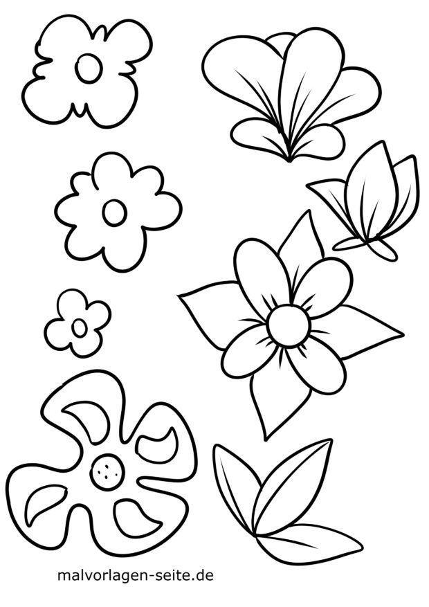 Malvorlage Blumen Blüten