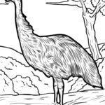 Malvorlage Emu | Tiere