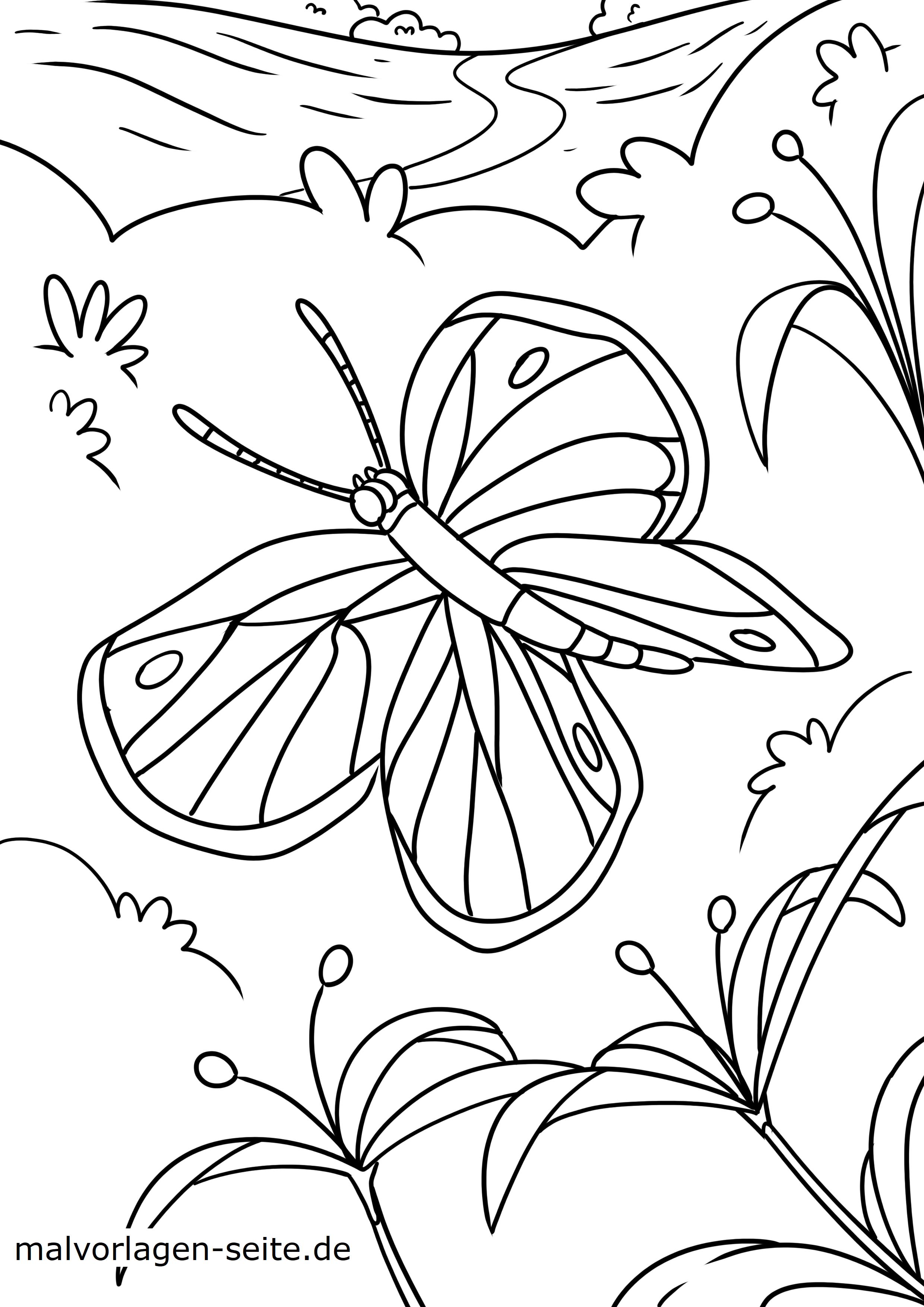 Malvorlage Schmetterling - Kostenlose Ausmalbilder