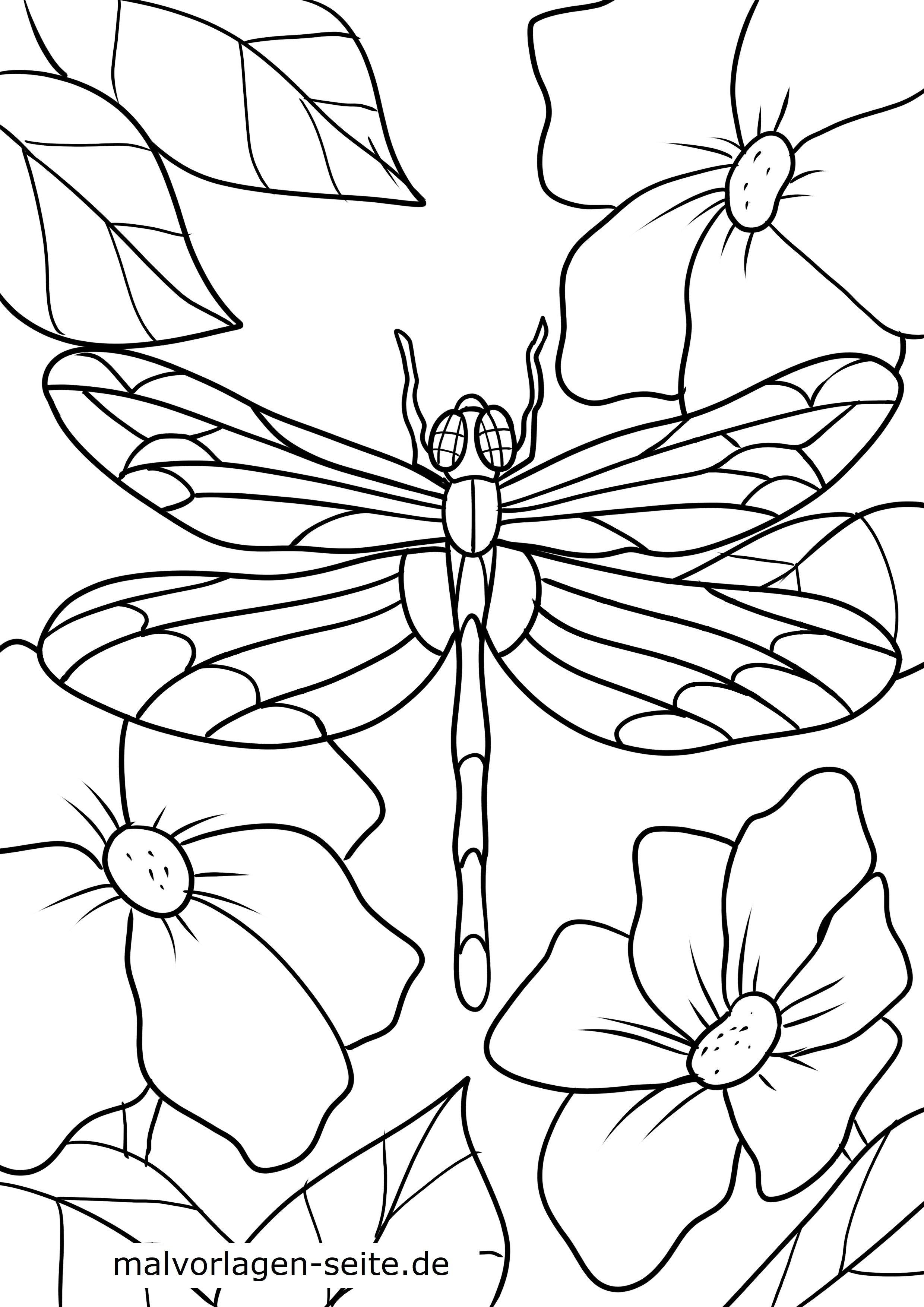 malvorlage libelle  tiere  kostenlose ausmalbilder