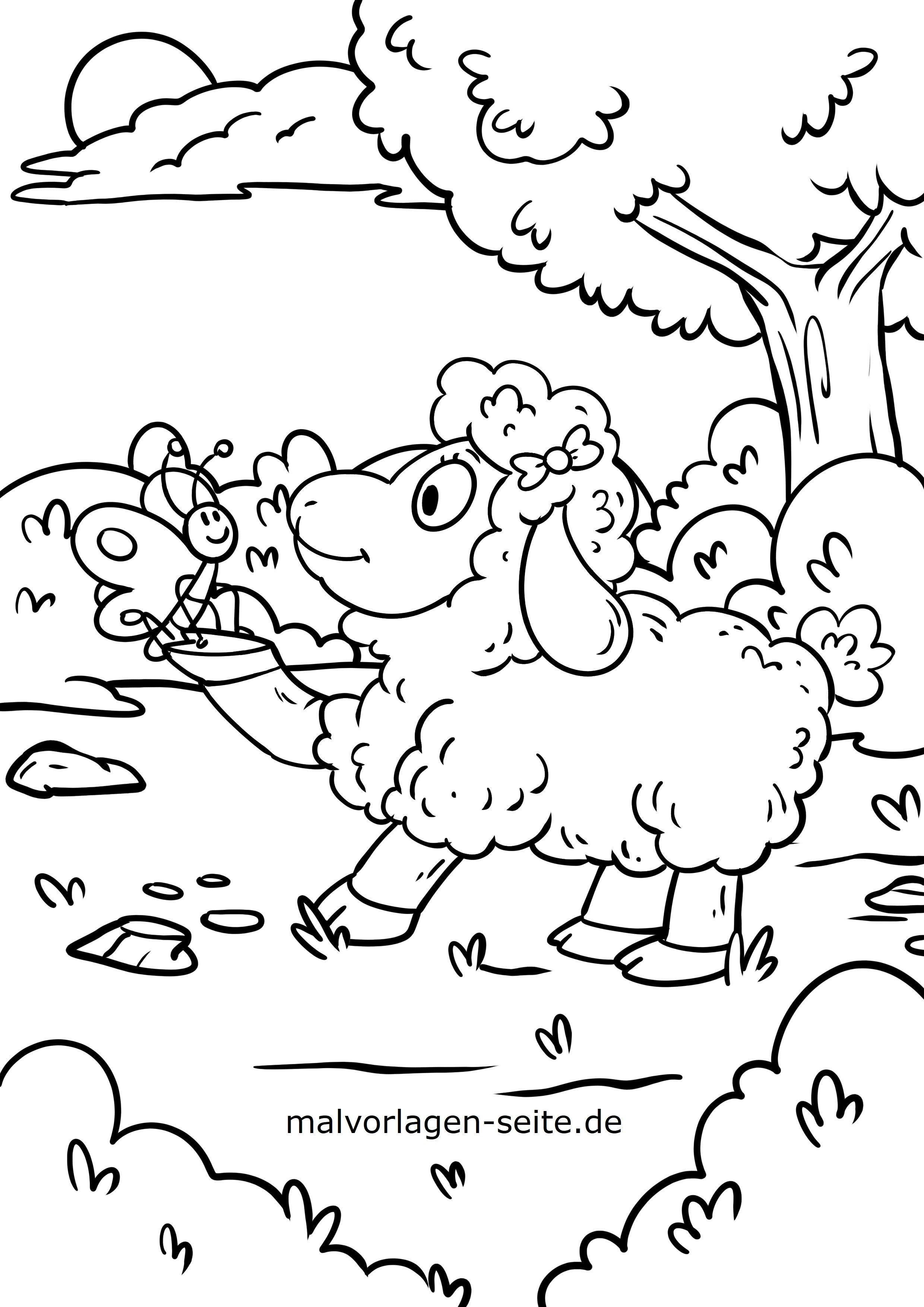 Malvorlage Schaf Und Schmetterling Tiere Kostenlose Ausmalbilder