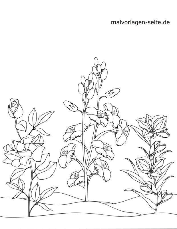 Malvorlage blühende Pflanzen