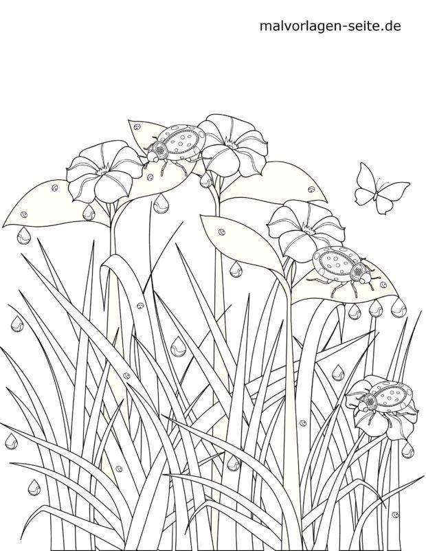 Malvorlage Marienkäfer auf Blumen
