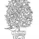 Размалёўкі дрэвы - размалёўкі