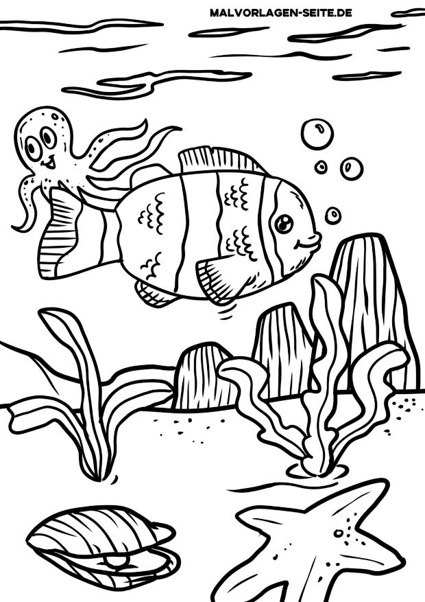 Malvorlage Clownfisch zum Ausmalen