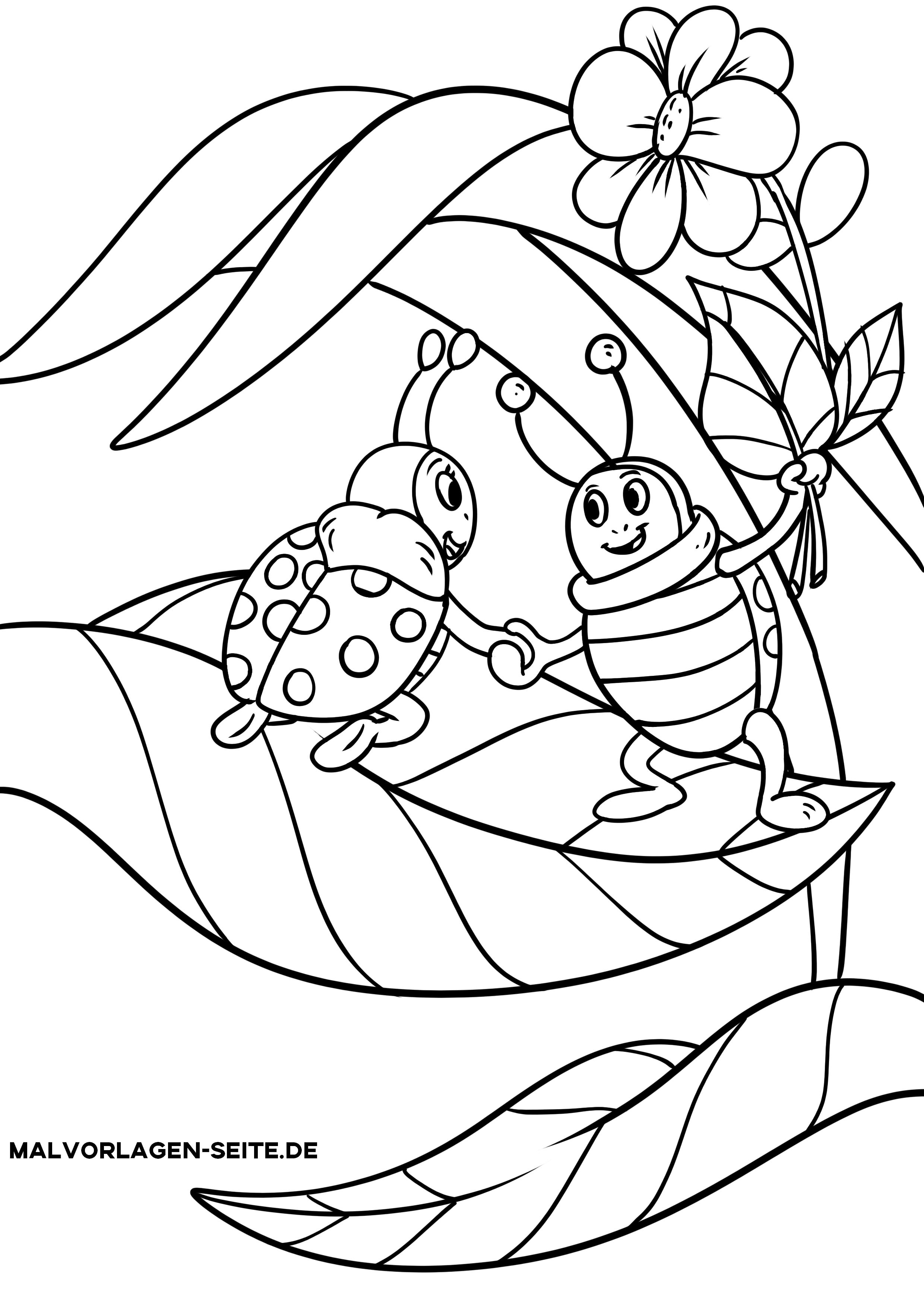 Malvorlage Marienkäfer  Tiere Insekten - Kostenlose Ausmalbilder