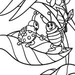 Malvorlage Marienkäfer | Tiere Insekten