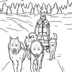 Coloring page dog sled race - winter sport dog