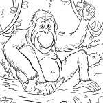 Coloring page orangutan in the jungle for coloring