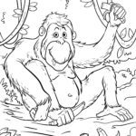 Coloring page orangutan monkeys