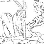 Coloring page Capricorn | animals