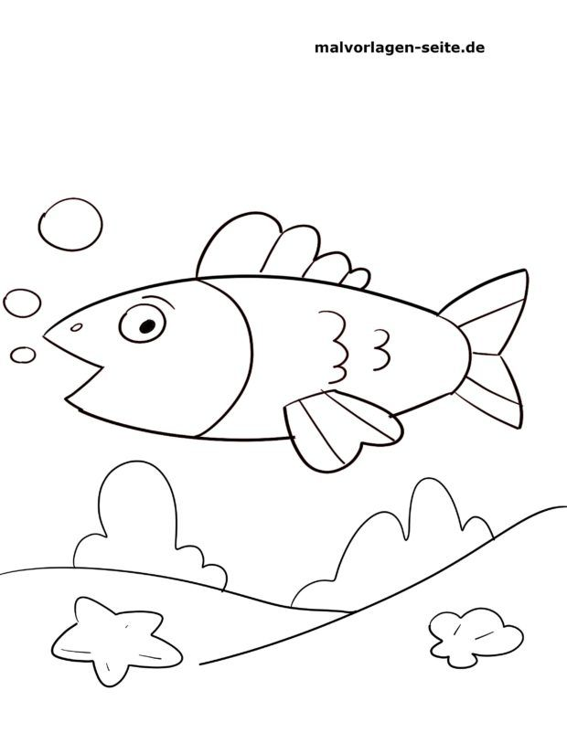 malvorlagen kinder fische