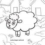 Malvorlage für kleine Kinder zum Ausmalen - Schaf