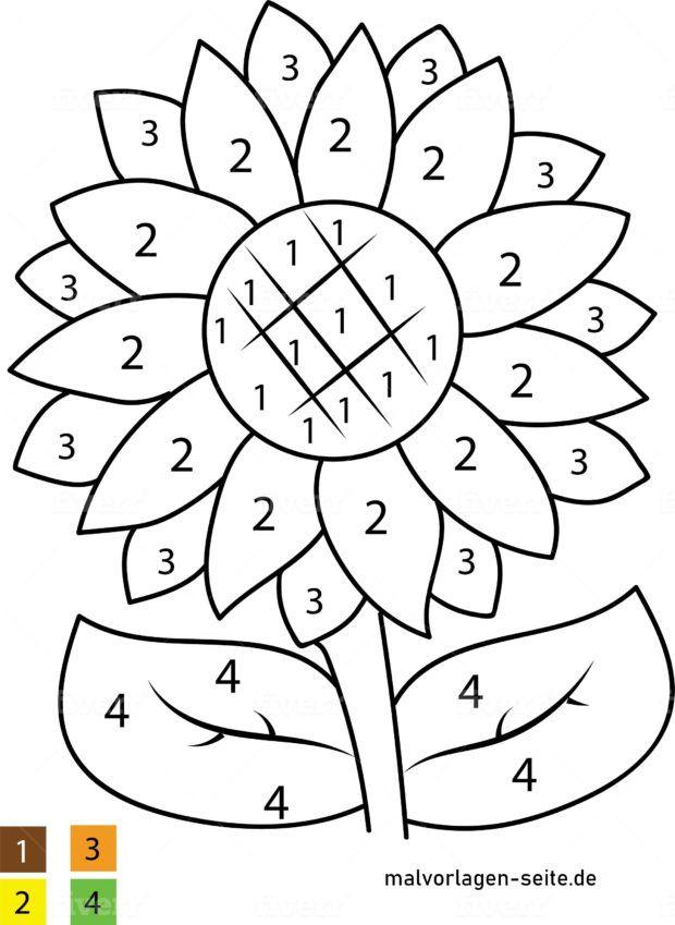 Malen nach Zahlen - Blume