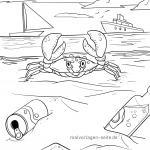 Crabs & crayfish coloring pages | Animals in the water