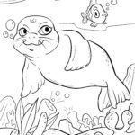 Coloring page Seal | Animals at the water