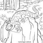 Malvorlage Salamander