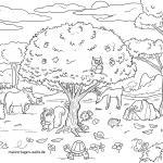 Coloring page forest animals - animals in the forest for coloring