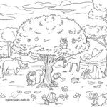 Coloring page forest animals | Animals in the forest