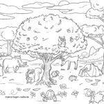 Malvorlage Waldtiere | Tiere im Wald
