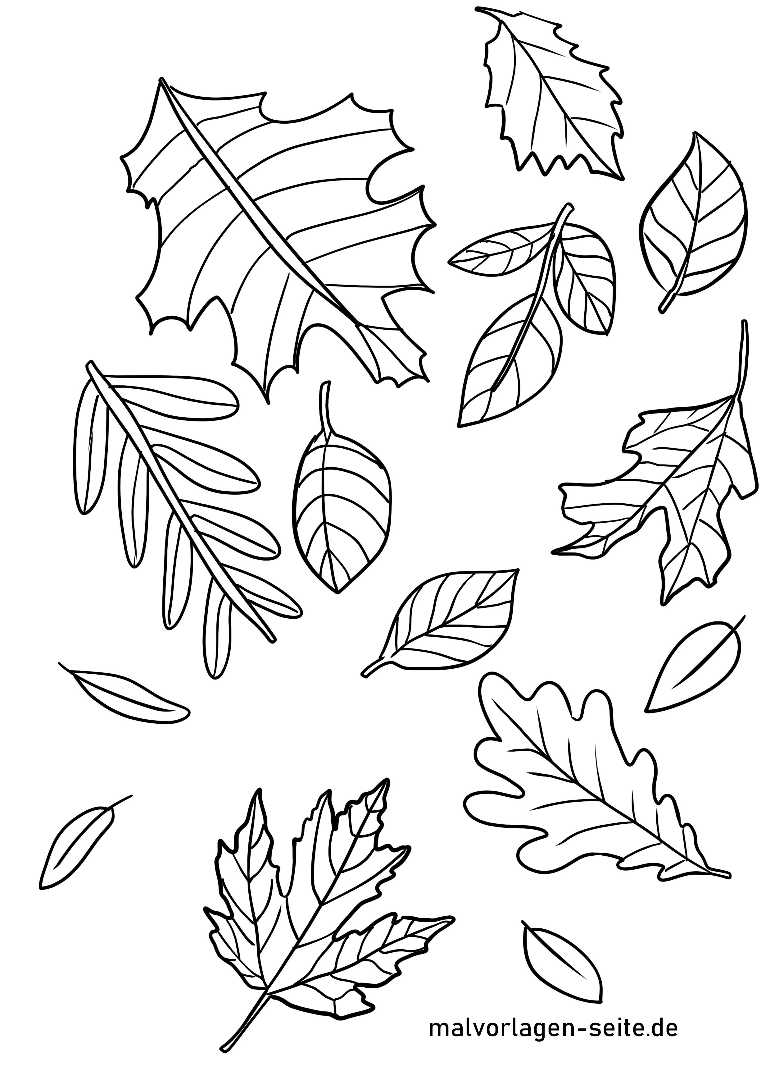 Malvorlage Herbstlaub  Herbst Jahreszeiten - Kostenlose Ausmalbilder
