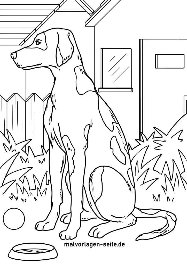 malvorlage dalmatiner  hunde  kostenlose ausmalbilder