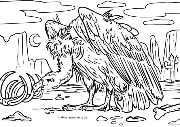 Malvorlage Geier Vogel Tiere