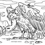 Coloring page vulture for coloring