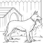 Malvorlage Deutscher Schäferhund | Hund