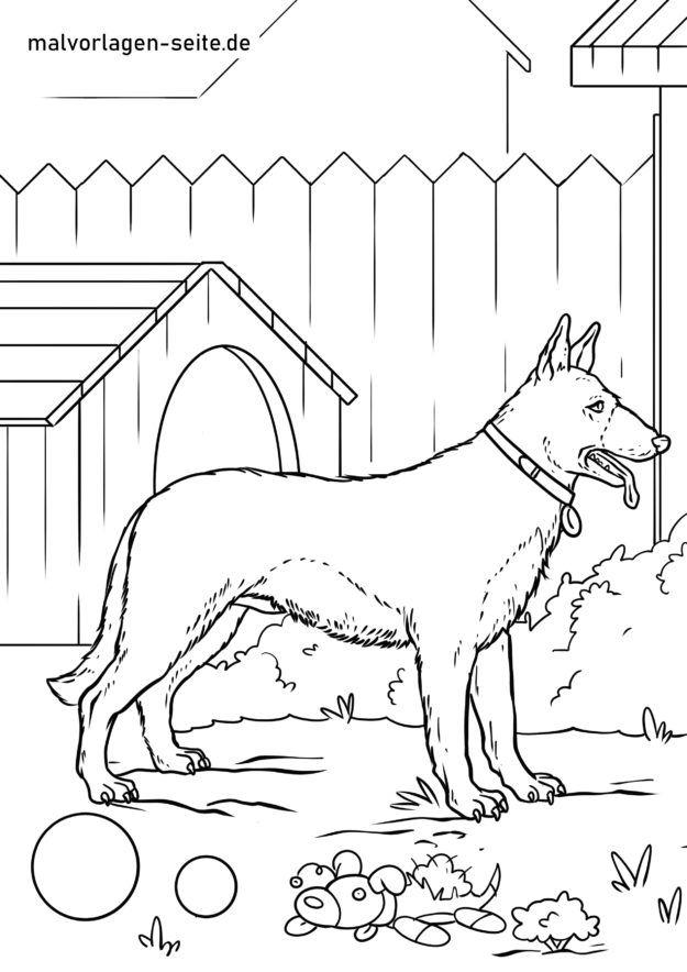 Malvorlage Deutscher Schäferhund