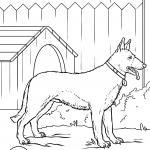 Coloring page German Shepherd dog for coloring