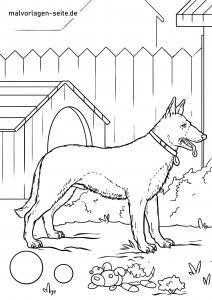 Malvorlage Deutscher Schäferhund zum Ausmalen