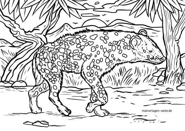 Malvorlage Hyäne