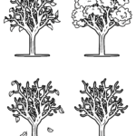 Coloring page tree in the 4 seasons for coloring