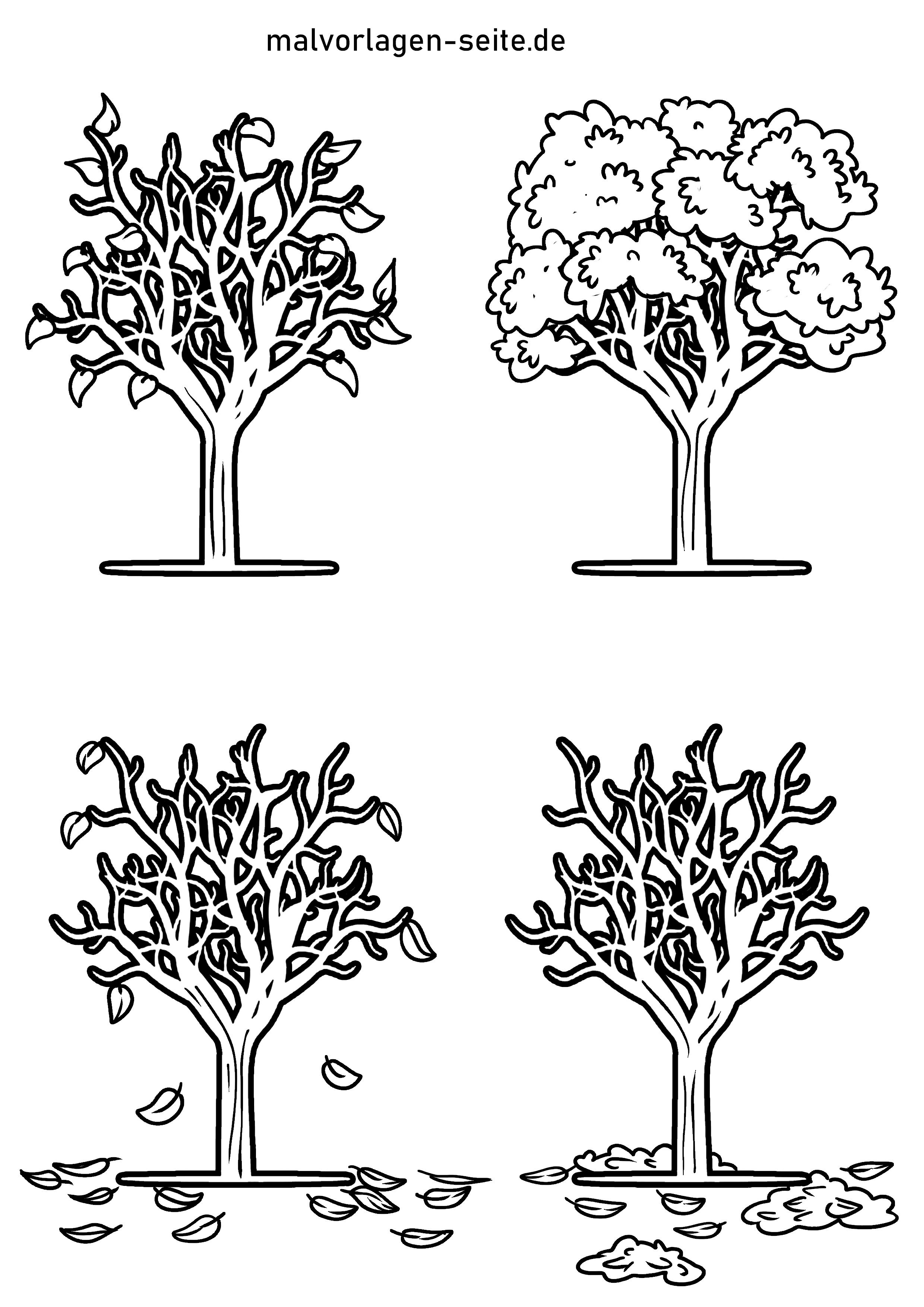 Malvorlage Baum 9 Jahreszeiten  Pflanzen - Kostenlose Ausmalbilder