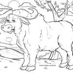 Disegni da colorare Animali - Pagina da colorare Buffalo