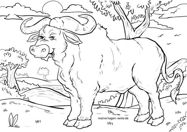Boyama Sayfasi Buffalo Hayvanlar Ucretsiz Boyama Sayfalari