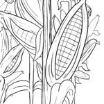 Coloring page corn / corn on the cob for coloring