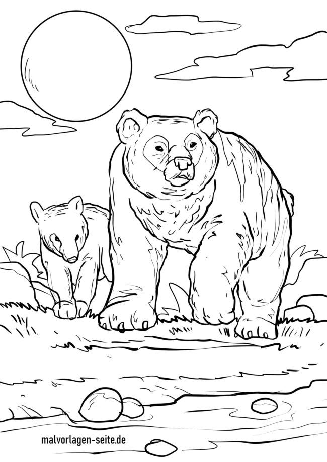 Bojanka medvjed i mladunče