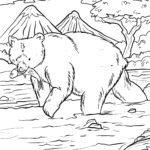Размалёўка карціна мядзведзя ловіць ласося для афарбоўкі