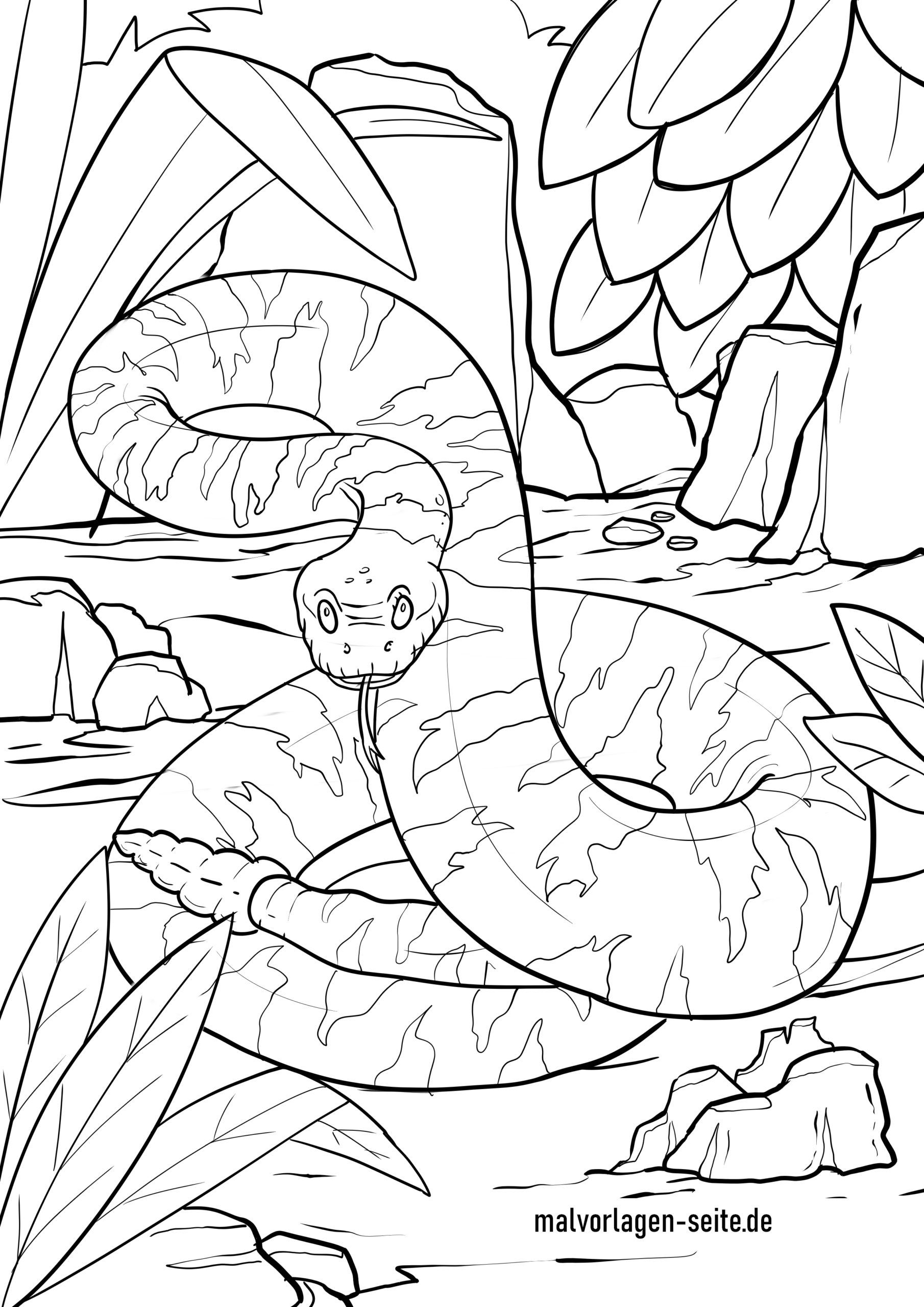 Malvorlage Schlange - Klapperschlange - Kostenlose Ausmalbilder