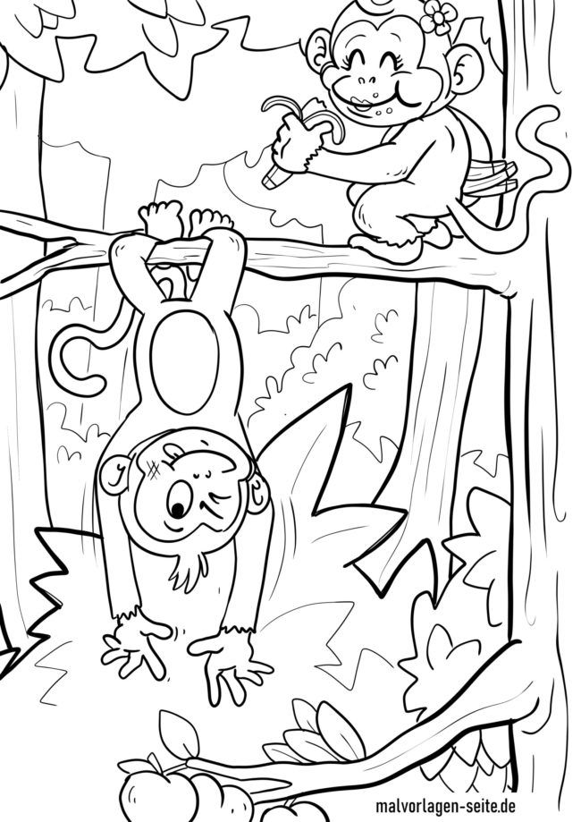 Coloring page monkeys