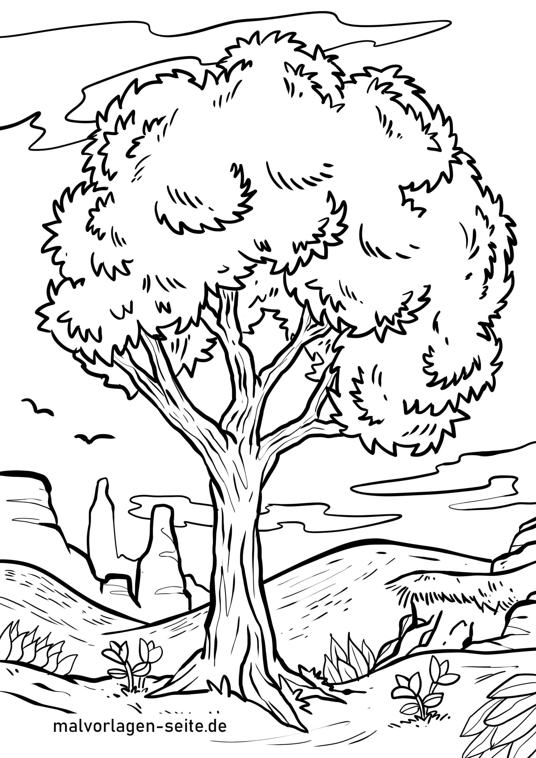 Malvorlage Baum - Kostenlose Ausmalbilder