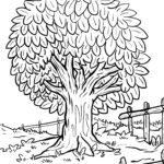 Baum Malvorlage zum Ausmalen für Kinder