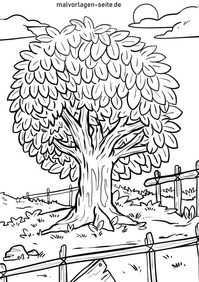 Coloriage arbre