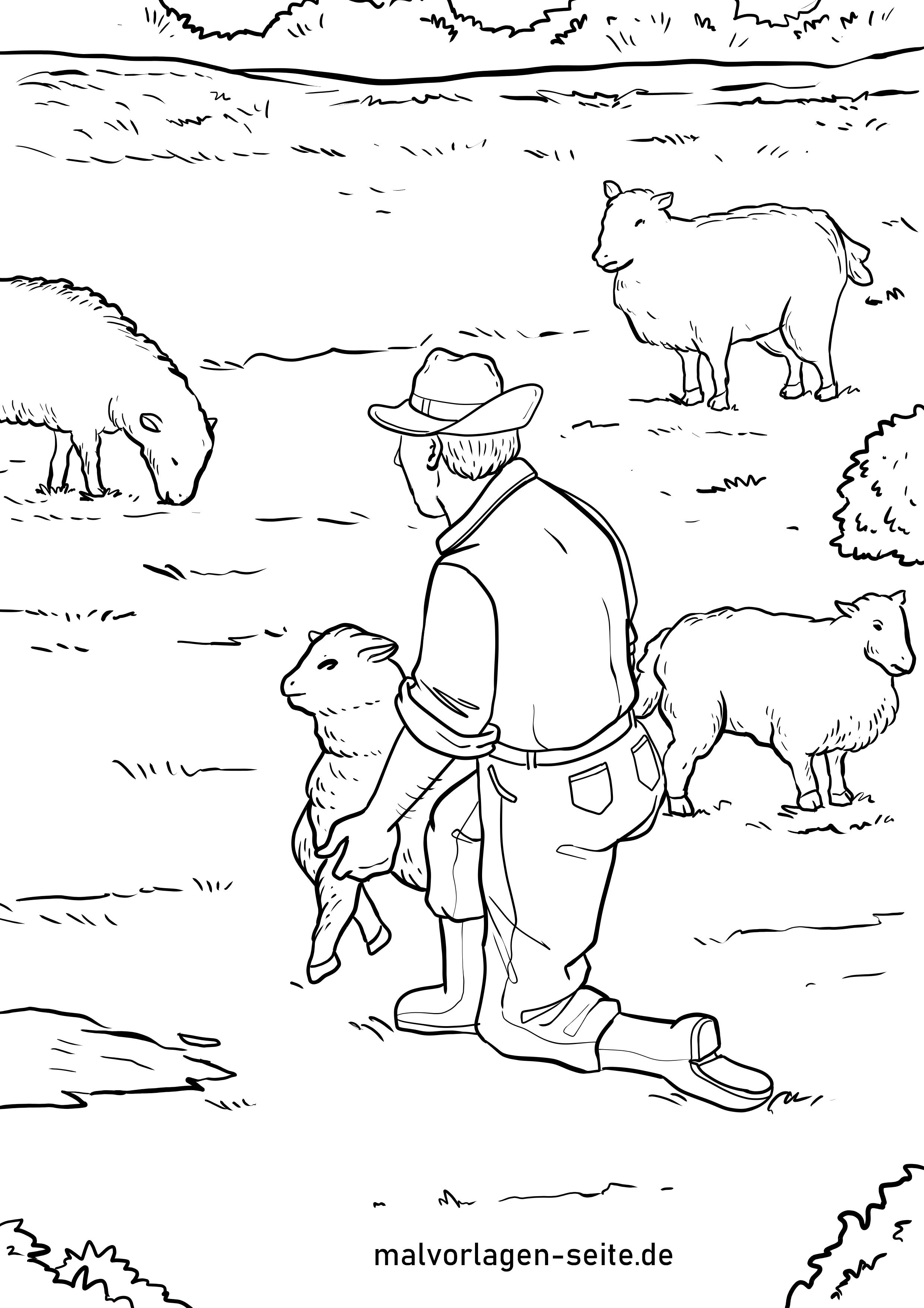 Malvorlage Schafer Schaf Kostenlose Ausmalbilder