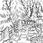 Zbarvení stránky les - stránka zbarvení pro děti